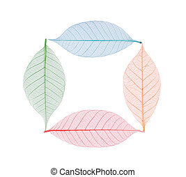 Real leaf with detail vein and various colors - Square...