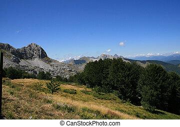Alpi apuane: Tusnanian alps view
