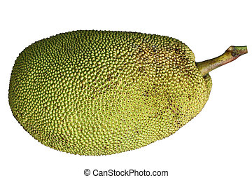 Jackfruit - Ripe Jackfruit Jack Fruit isolated on white...