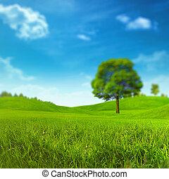 Summer meadow under bright noon sun