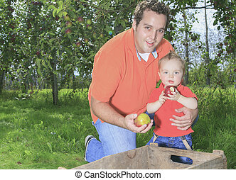 Father and son having fun on the apple season
