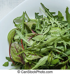 Rucola, arugula on a plate