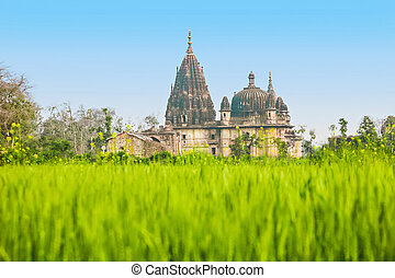 Temple ruins, Orchha - Temple ruins in Orchha in Madhya...