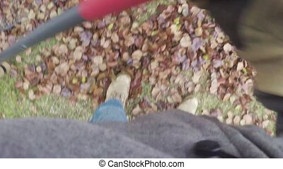 Raking leaves in yard - Yard work raking autumn leaves on...