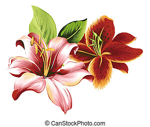 flower - a vivid illustration of two nice flowers