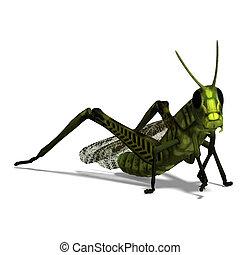 green grasshopper - 3D rendering of a green grasshopper with...