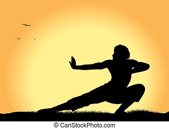 martial arts - silhouette of man practicing martial arts