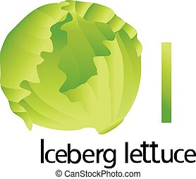 Illustrator i font with iceberg lettuce