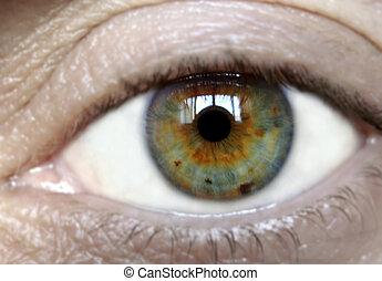 Human eye - Detail of human eye