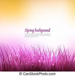 Natural green grass background - Natural spring grass...