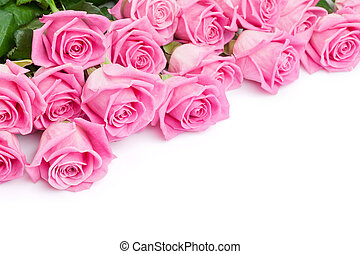 Valentines day background with pink roses Isolated on white...