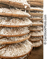 Silkworm cocoons - Baskets with silkworm cocoons at a silk...