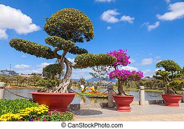 Bonsai at Da Lat Flower Gardens