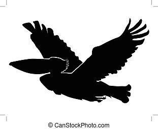 pelican - silhouette of pelican