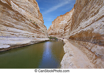 The canyon in Israel - Ein Avdat - Unique canyon in Israel -...