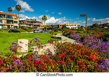 Flowers in a garden at Calafia Park and view of Avenida...