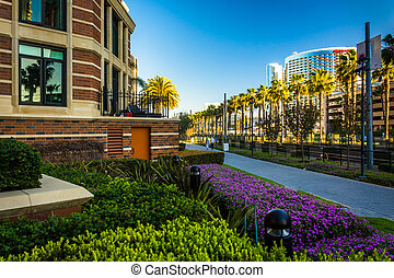 Gardens and buildings along the MLK Promenade in San Diego,...