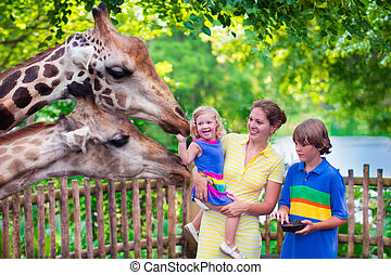 Family feeding giraffe in a zoo - Happy family, young mother...