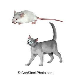 Cute white mouse, gray kitten walks against white...