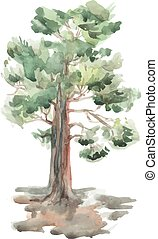 pine tree on a white background. Watercolor. Sketch. vector...