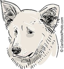 Head, muzzle the dog. Shepherd. Sketch drawing. Black...