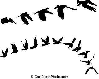 Doves and pigeons set for peace concept and wedding design. Flying dove sketch set. Vector
