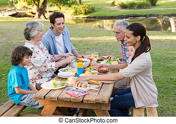 Extended family having an outdoor lunch on a sunny day