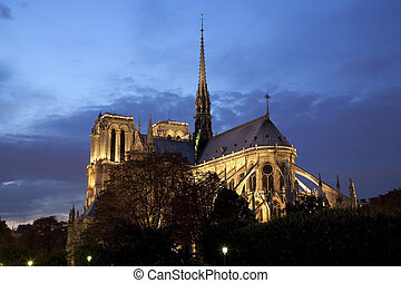 Notre-Dame Cathedral at night - Back view of the Notre-Dame...