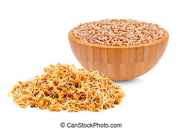 wheat germ and wheat bowl isolated on white