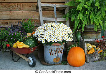 Harvest Decorations - Harvest decorations with pumpkins and...