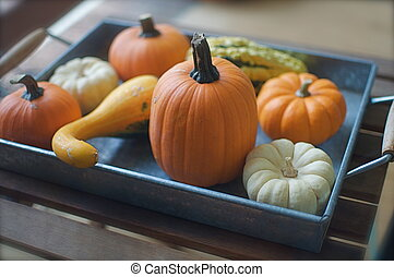 Tray of Decorative Pumpkins - A silver tray is loaded with...