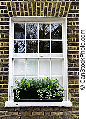 Window in London