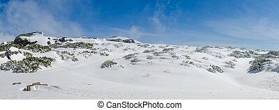 landskap, av, Serra, da, Estrela,