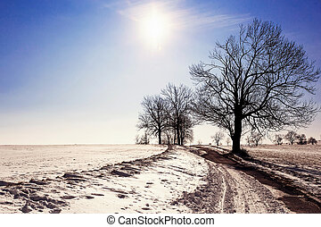 winter landscape with road and trees, blue sky and sun
