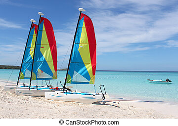 Tropical beach sailboats - Colorful sailboats for rent on a...