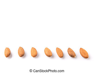 Almond Nut - Raw almond nut over white background
