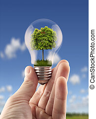 Green energy - Hand holding light bulb with the green tree...