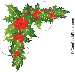 Christmas holly leaves decoration vector illustration
