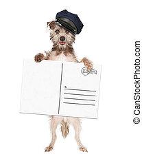 Dog Mailman Delivering Postcard