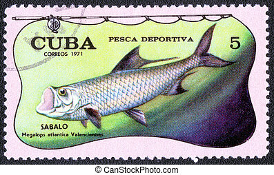 postage stamp - CUBA - CIRCA 1971: A stamp printed by CUBA...