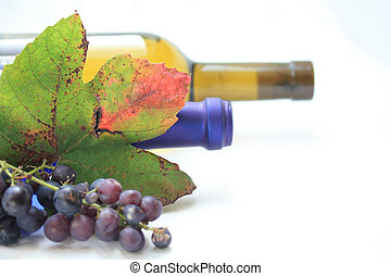 Wine bottels and grape leaves - Autumn colored grape leaves,...