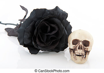 Halloween black rose and skull isolated over white