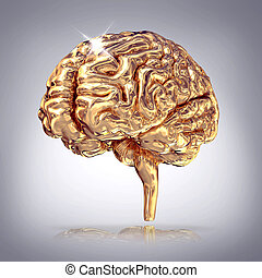 Golden brains on grey background - Golden brains on grey...
