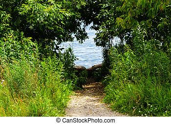 Dirt path leading to water through shrubs - Dirt path...