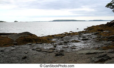 Seashore Maine USA Scenic View