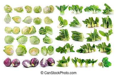 Bok choy (chinese cabbage) , cabbage isolated on white...