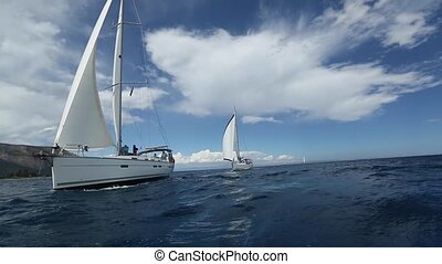 Boats in sailing regatta.