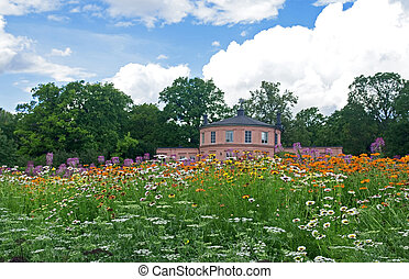 Meadow in a botanical garden - Wild flowers meadow in...