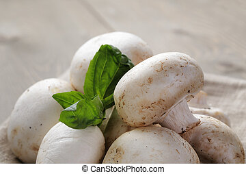 heap of fresh white mushrooms on sack cloth over table -...