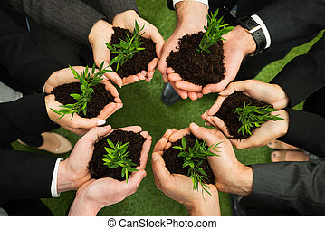 Businesspeople Hands With Plant And Soil - Group Of...